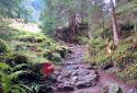 Obersulzbachtal, családi túra egy klasszikus gleccserpatak völgyében vízesésékkel és hegyi tanyákkal