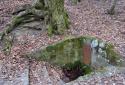 Leányfalutól Dunabogdányig, a Vörös-kőn át