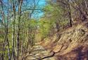 Pilisszentlászlóról a Sikárosi-réten át a Keserű-hegy járatlan útjain fel a Prédikálószékre