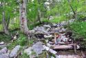 Logarska dolina, rövid, látványos túra Szlovénia legmagasabb vízesése mellett