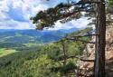 Hohe Wand, Wagnersteig, Springlessteig, a déli sziklafalak kalandos útvonalai