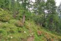 Poludnig, Karintia legszebb alpesi tanyacsoportjai között