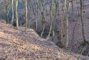 Visegrádi-hegység, Áprily-völgy, Nagy-Villám, Fekete-hegy körtúra