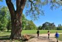 Dég, Festetics-kastély, angolpark