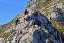 Ötscher, csúcstámadás a Rauer Kamm vad, sziklás gerincén