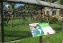 Pécsi állatkert, Pécs Zoo