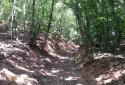 Pilis, Klastrompuszta, Fekete-hegy, Kétágú-hegy