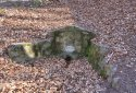 Jakab-hegy, Zsongor-kő, Babás Szerkövek