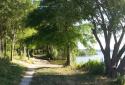 Kányavári-sziget, Kis-Balaton