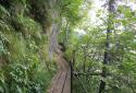 Traunsee, Miesweg, látványos túra a tóparti sziklafalakon