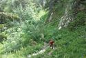 Pršivec, kilátóhegy a Bohinji-tó felett