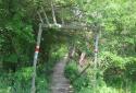 A Gyadai-rétről a Naszály csúcsára
