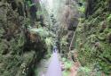 Bastei, Schwedenlöcher, Amselgrund