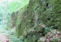 Úrkúti őskarszt