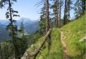 Steinplatte, látványos túra egy különleges hegyre