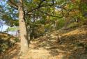 Dürnstein, a Wachau leglátványosabb gyalogtúrája