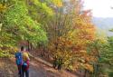 Seekopf, Hirschwand, élménytúra a Wachau déli partján magasló hegyeken