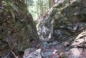 Weichtalklamm, látványos szurdoktúra a Schneeberg oldalában