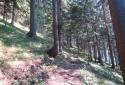 Gelände, páratlan hegycsúcs a Hohe Wand és a Schneeberg közt