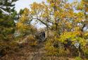 Csóri horgok, a Keleti-Bakony szépséges száraz szurdokvölgyei, szavannás fennsíkjai