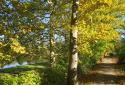 Orfűi séta, Pécsi-tó, Orfűi-tó, Balázs-hegyi-kilátó