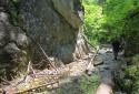 Suchá Belá, a Szlovák Paradicsom legnépszerűbb szurdoka