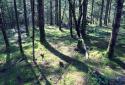 Soča-út, látványos túra a smaragdzöld hegyi folyó partján