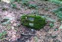 A Zagyva-forrásvidékről Salgó várába és a Boszorkány-kőre
